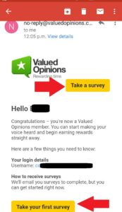 Valued Opinions Survey