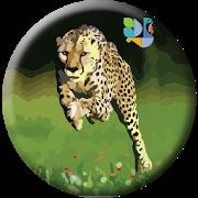 Hansa Cheetah Survey Free PayTM Cash