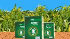 TynzerSelfie Free PayTM Cash